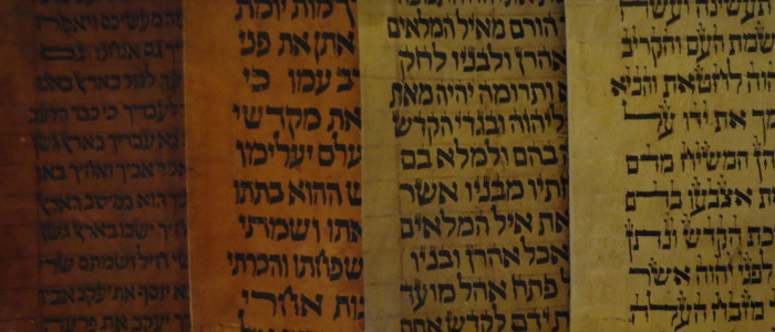 4 Torah scrolls side by side with different ages