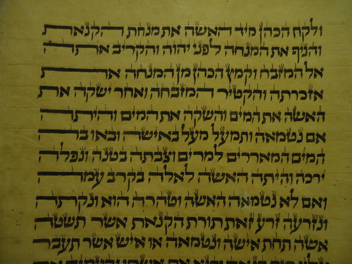 closeup of Torah scroll with cool calligraphy