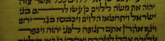 Hebrew stretched letters in Torah scroll