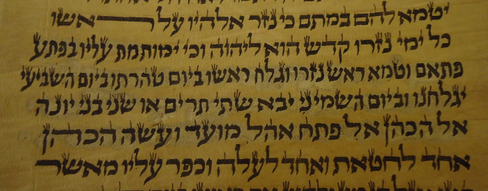 scribe makes a big mistake and scratches off several lines in a Torah scroll