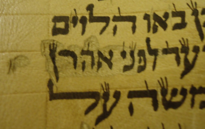 scribe mistake in Hebrew Torah scroll