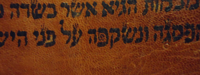 a whirled pe and normal pe in the Hebrew Torah in the same sentence